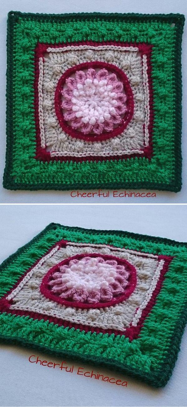 Cheerful Echinacea