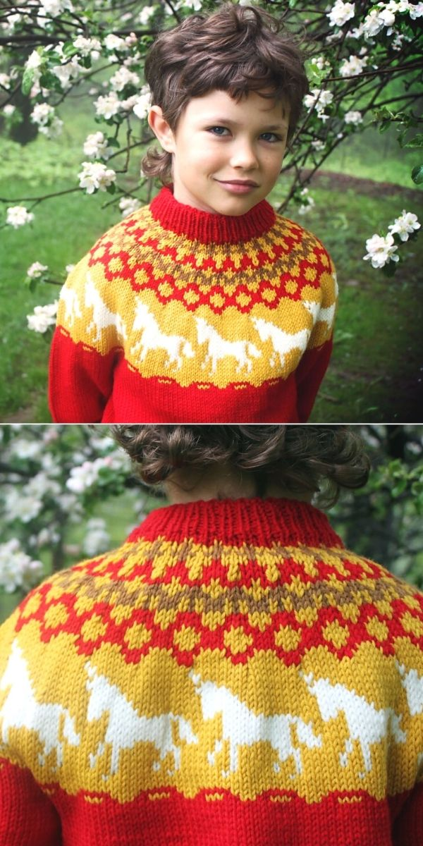 Elijah's 2011 Birthday Sweater