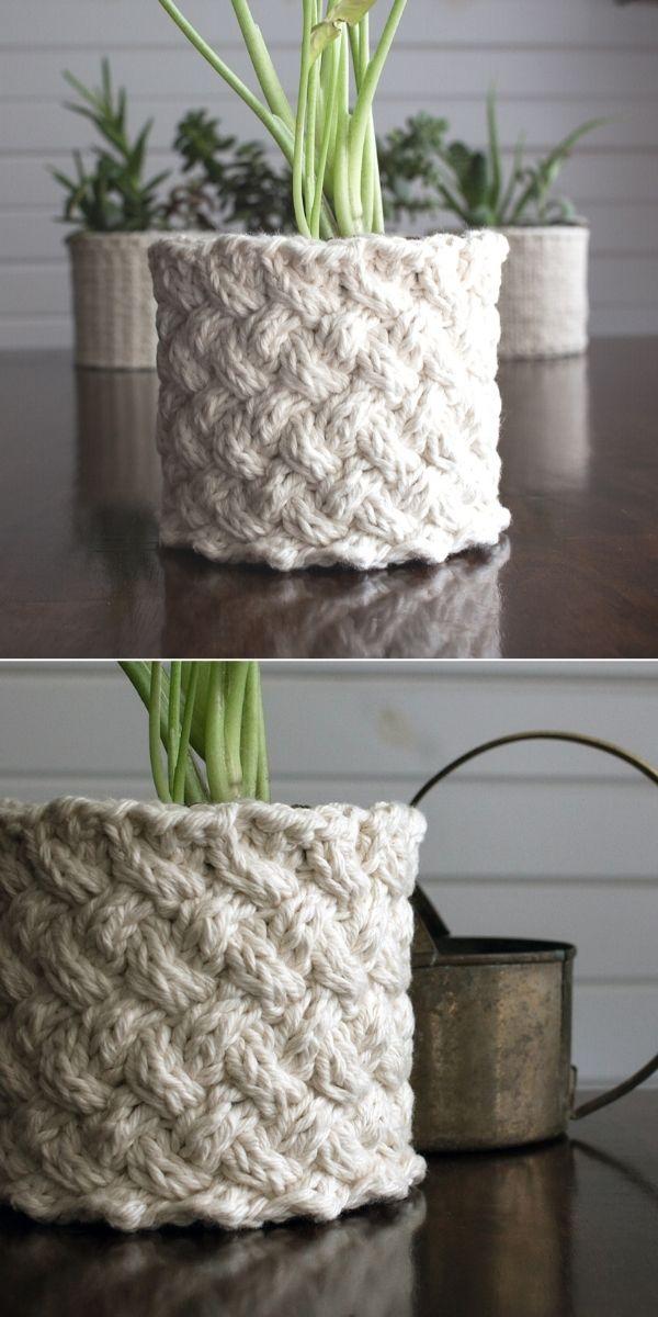 Plant Cozy : Lattice