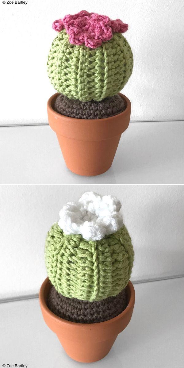 Mini Round Barrel Cactus Free Crochet Pattern