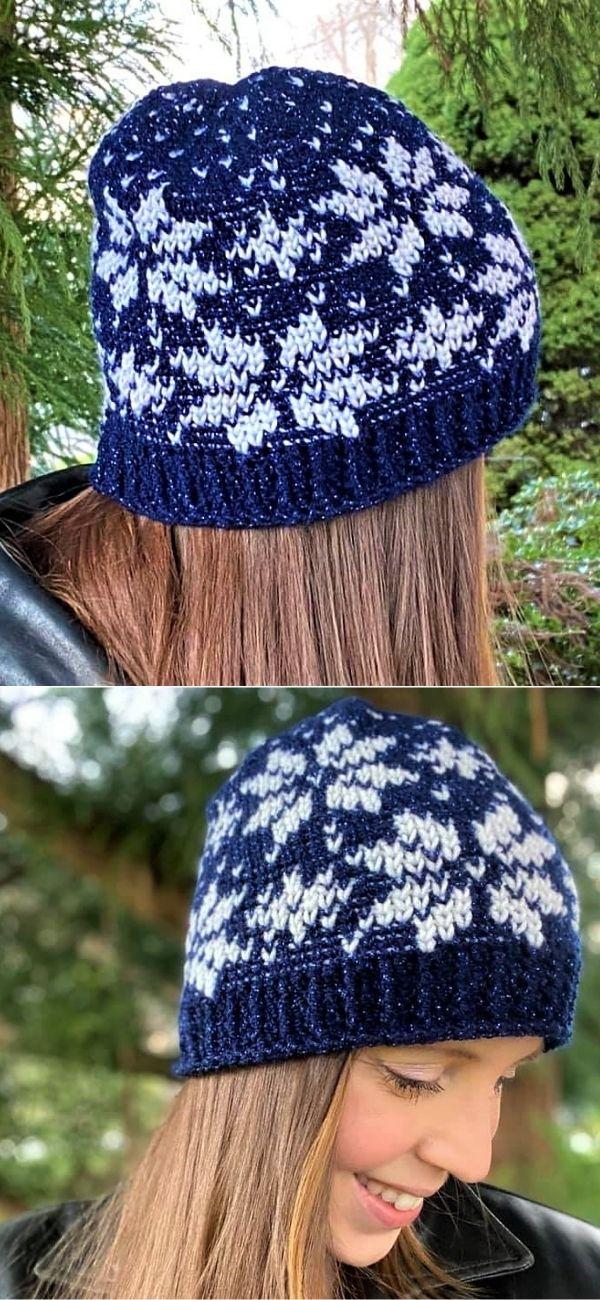Snowy Night Hat